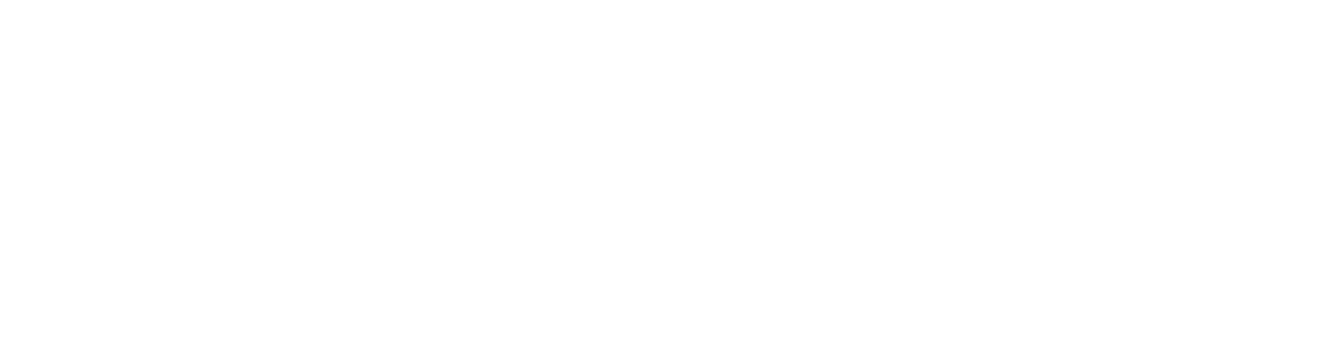 Customer Experience Leaders Exchange 2020