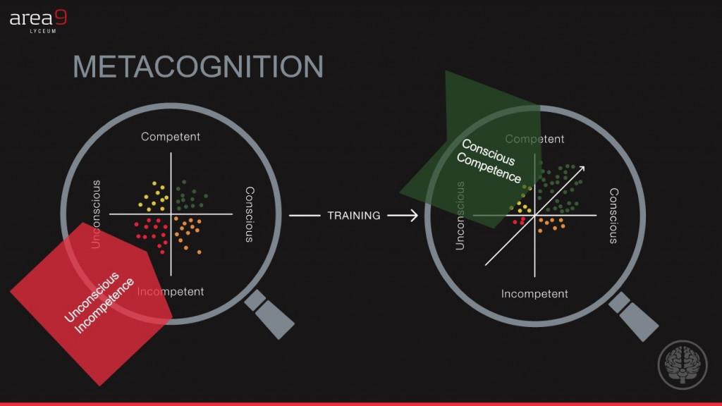 metacognition graph