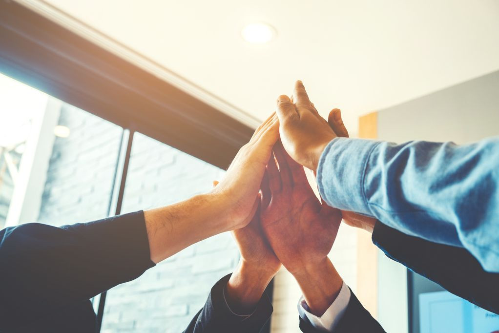 The Power of Organizational Trust