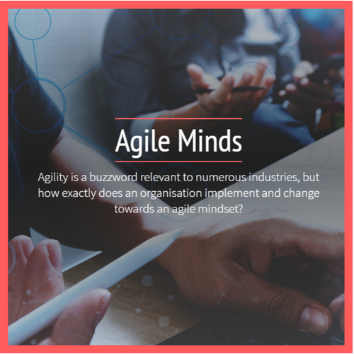 Agile Minds
