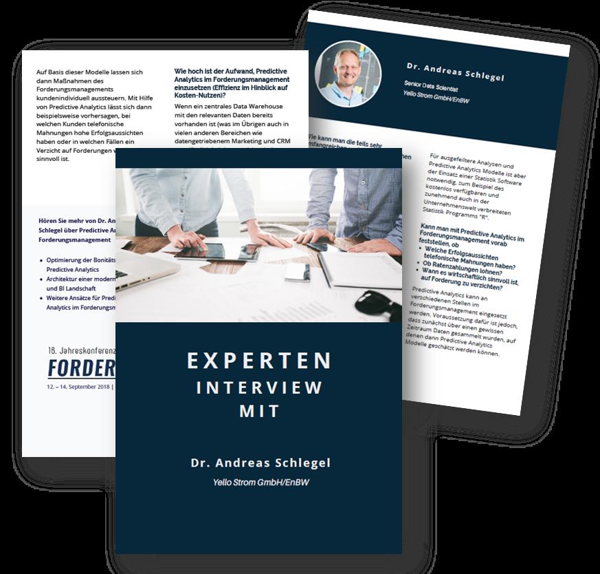 Experteninterview mit Dr. Andreas Schlegel von Yello Strom/ EnBW