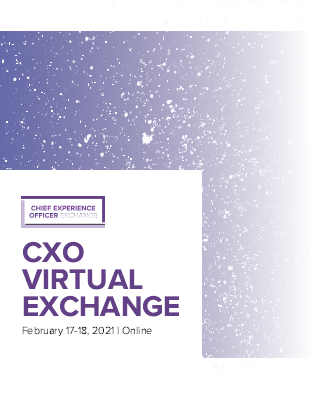 Chief Experience Officer Virtual Exchange