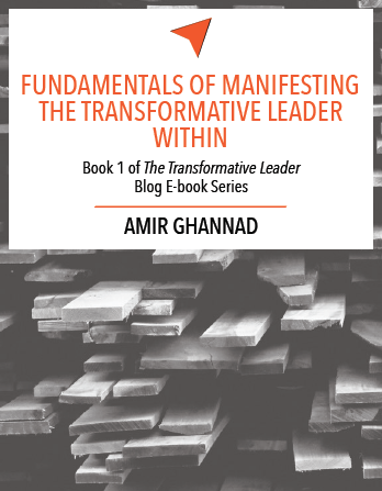 The Transformative Leader - Complete eBook Series
