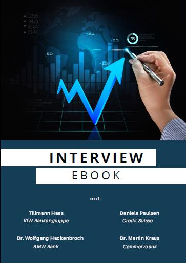 Ebook - Interviews mit der KfW Bankengruppe, Credit Suisse, BMW Bank und Commerzbank