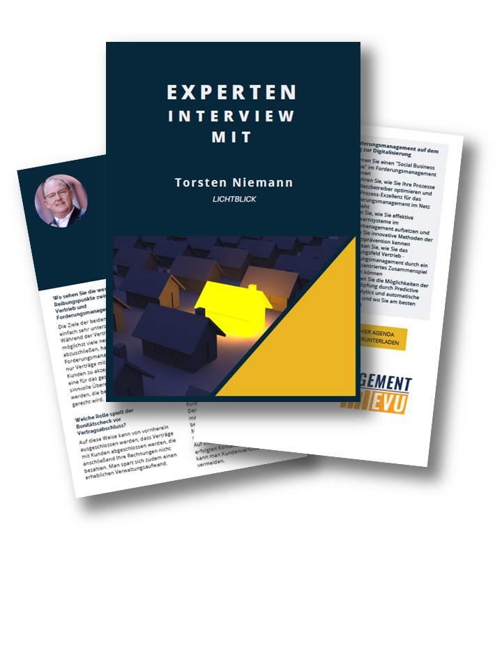 Interview mit Herr Niemann von Ökostromanbieter Lichtblick über Spannungsfeld Vertrieb-Forderungsmanagement