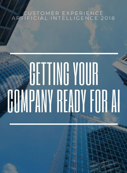 Getting Your Company Ready for AI