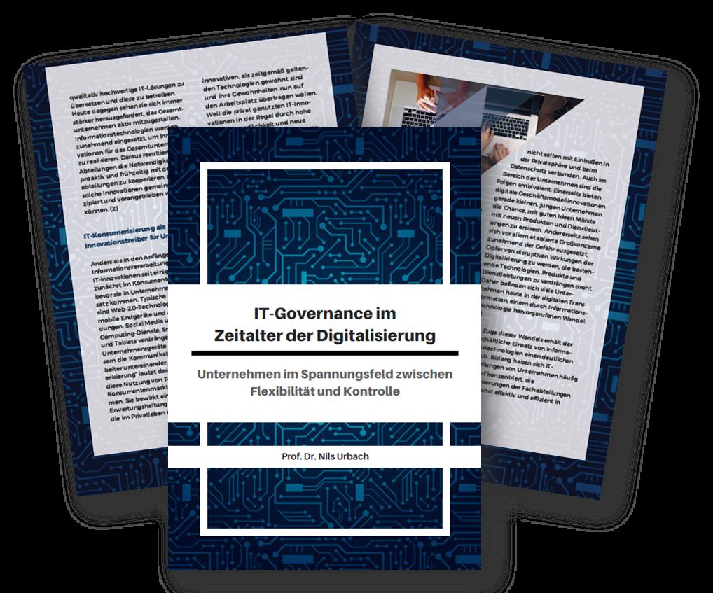 IT-Governance im Zeitalter der Digitalisierung - Unternehmen im Spannungsfeld zwischen Flexibilität und Kontrolle