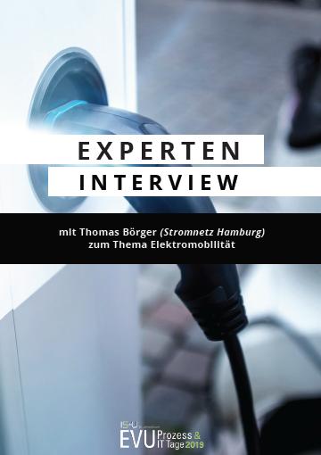 Experteninterview zum Thema Elektromobilität mit Stromnetz Hamburg