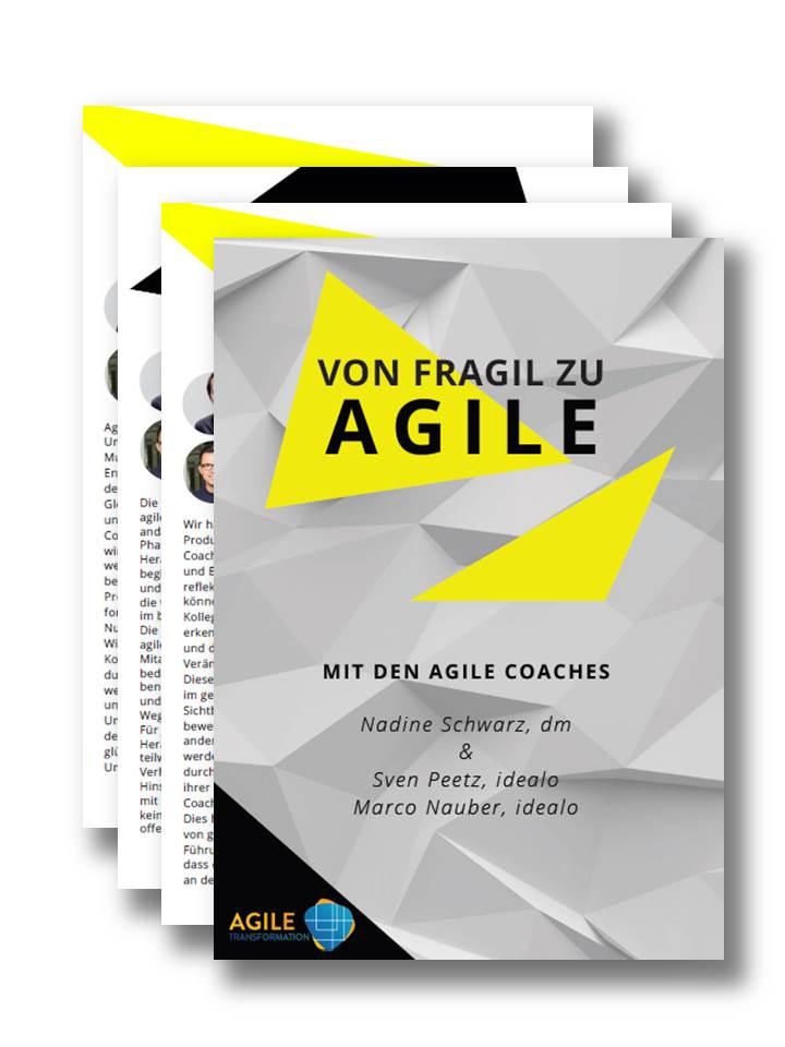 Von Fragil zu Agile: idealo und dm im Interview