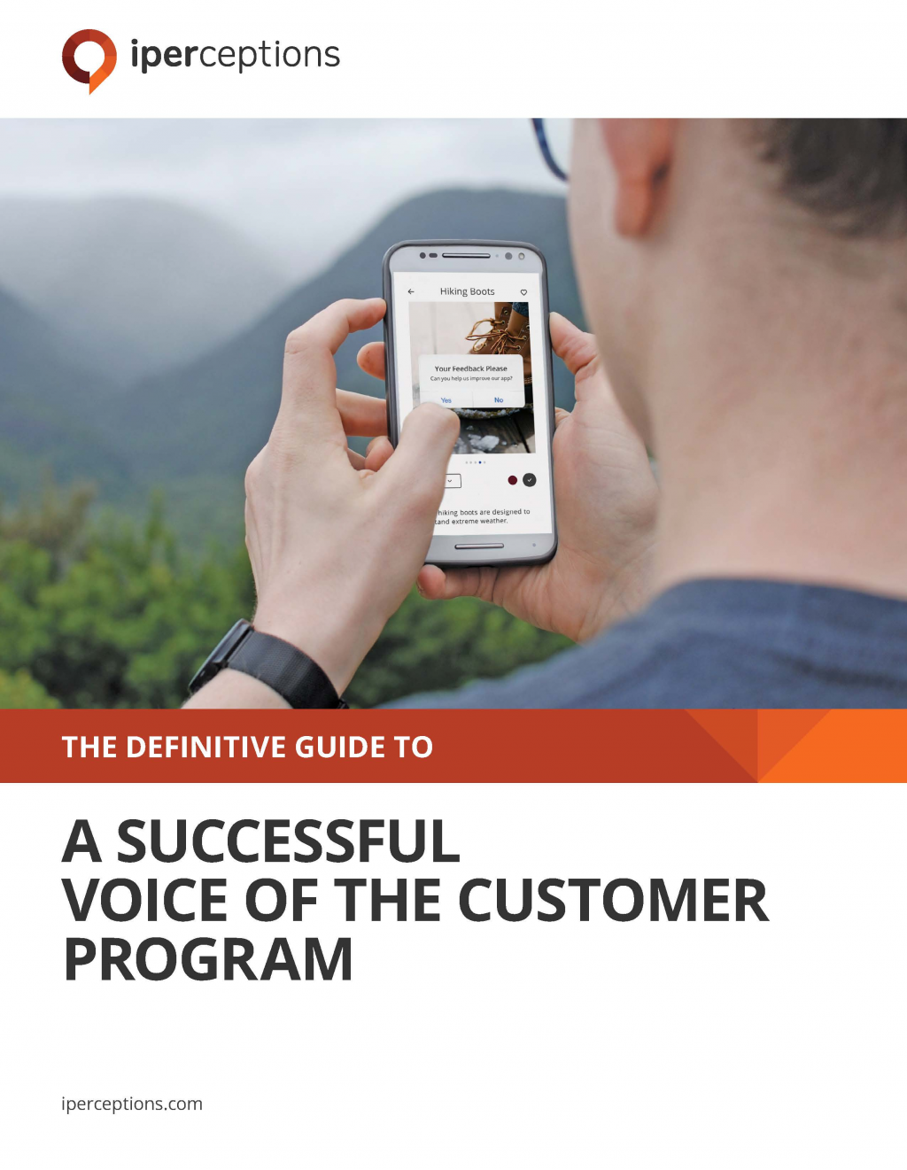 View the report - The Definitive Guide to: A Successful Voice of the Customer Program