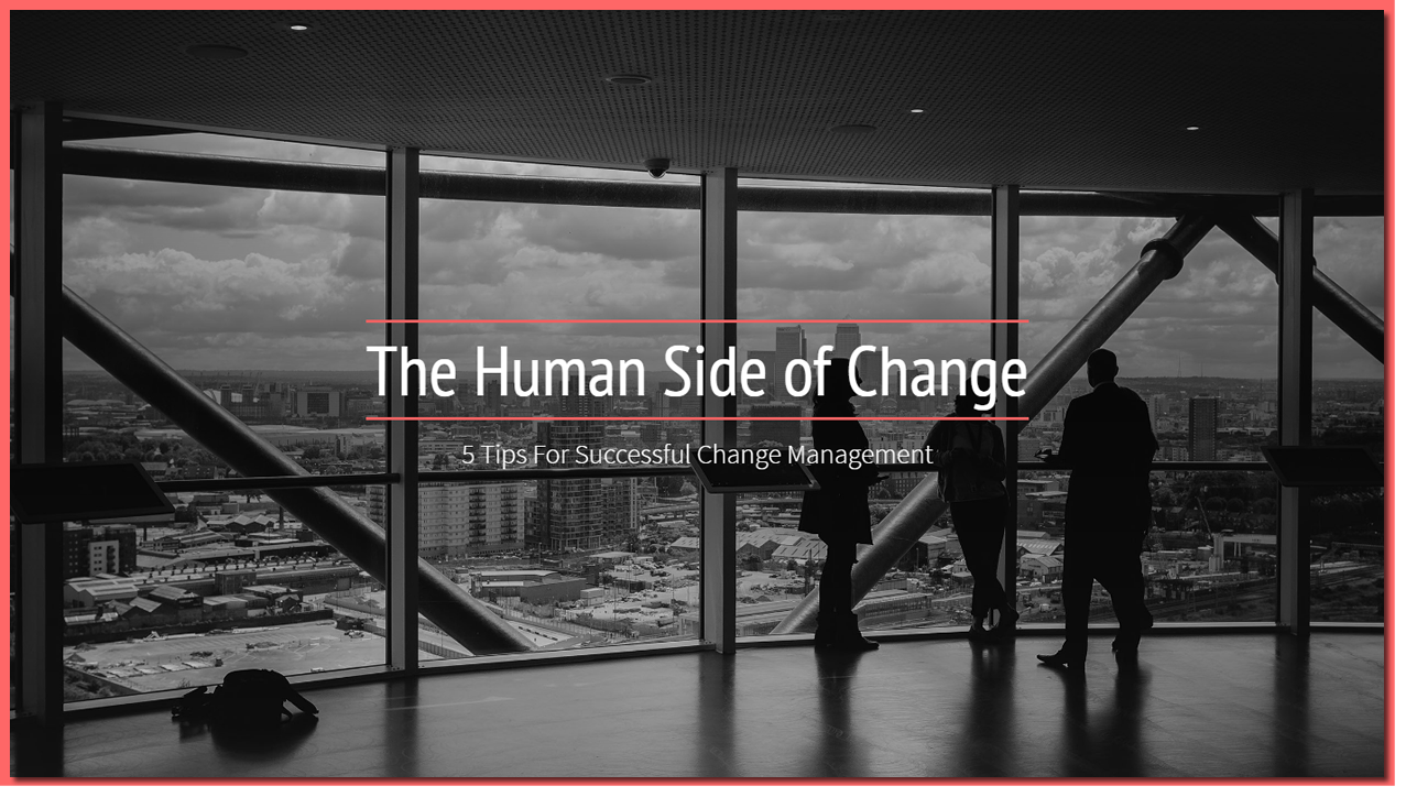 The Human Side of Change: Interview with 3 Sweden and Broadnet