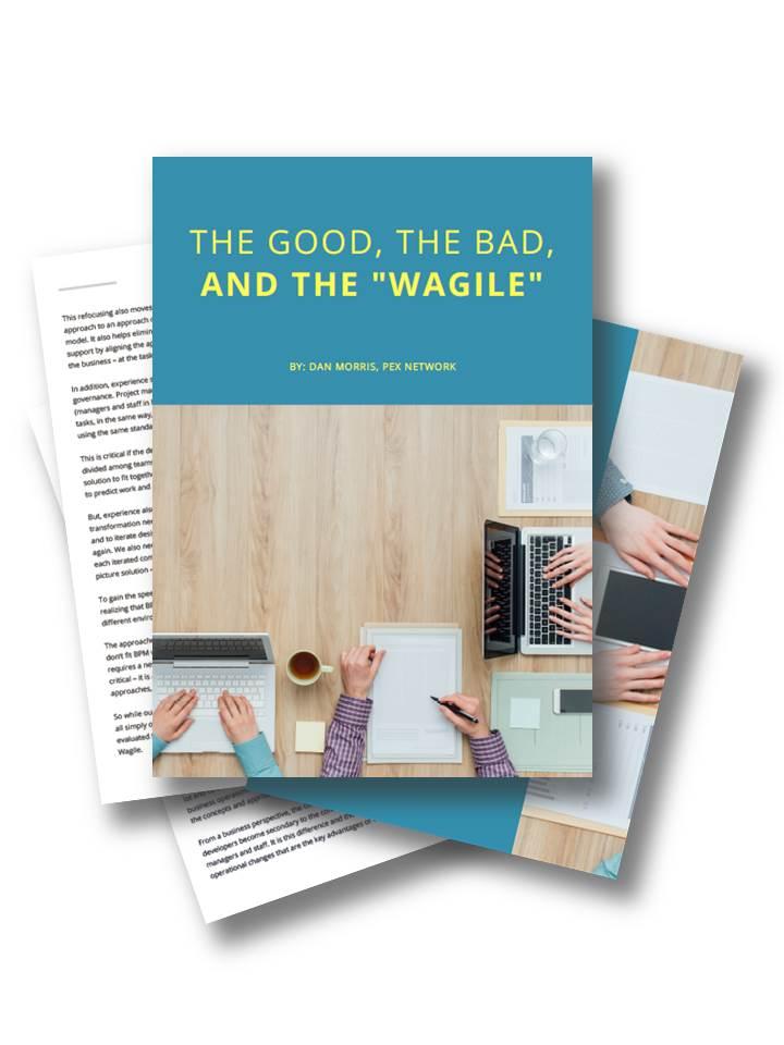 """Artikel über das Gute, das Schlechte und das """"Wagile"""" BPM"""
