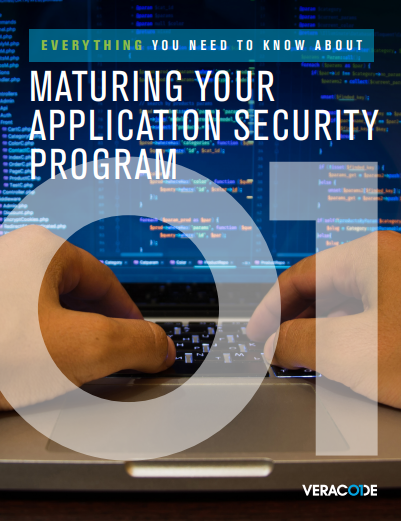 Maturing Your Application Security Program