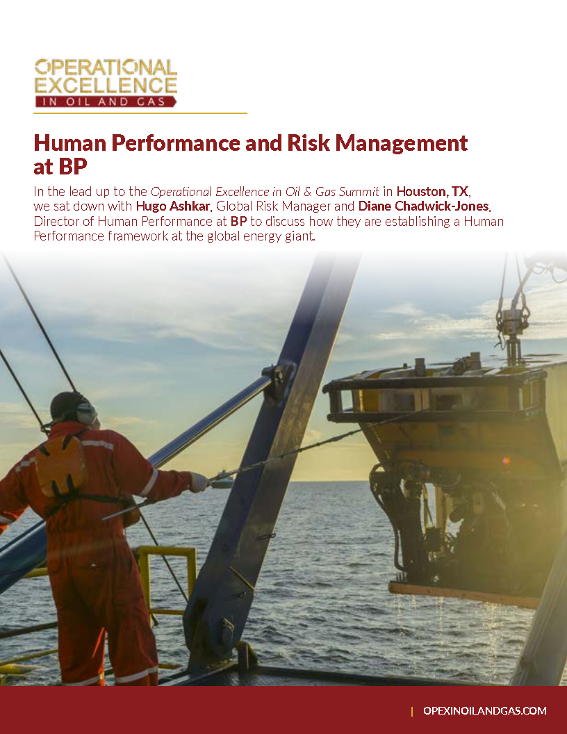 Human Performance and Risk Management with BP