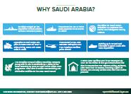 Snapshot of procurement opportunities in the region