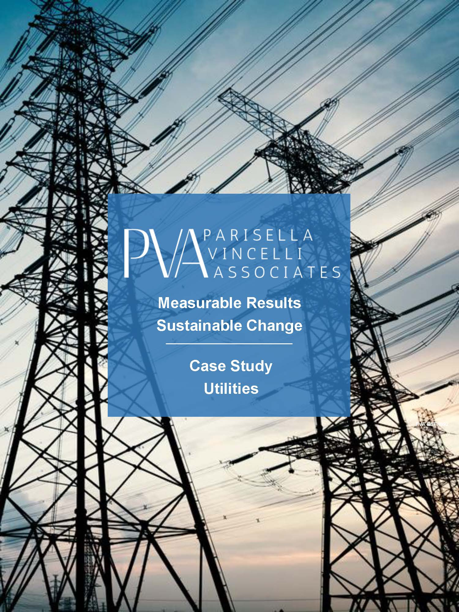 PVA Consulting Group Case Study: Measurable Results, Sustainable Change - Utilities