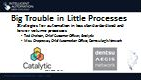 Big Trouble in Little Processes: Strategies for Automation in Less Standardized and Lower Volume Processes