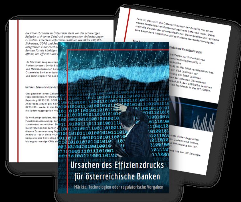 Ursachen des Effizienzdrucks für oesterreichische Banken