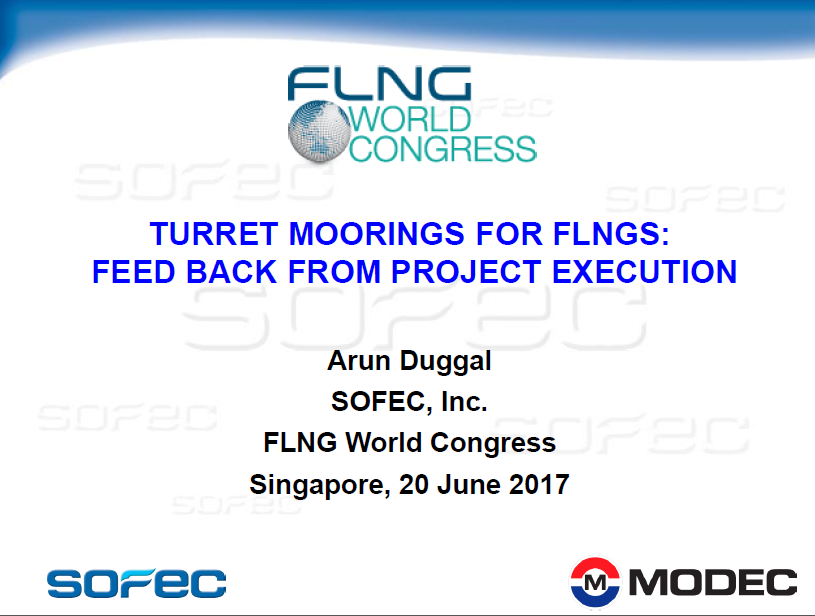 TURRET MOORINGS FOR FLNGS: FEED BACK FROM PROJECT EXECUTION