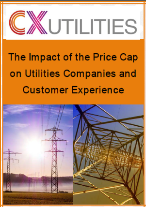 The Impact of the Price Cap on Utilities Companies and Customer Experience