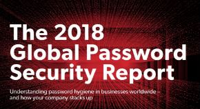 The 2018 Global Password Security Report