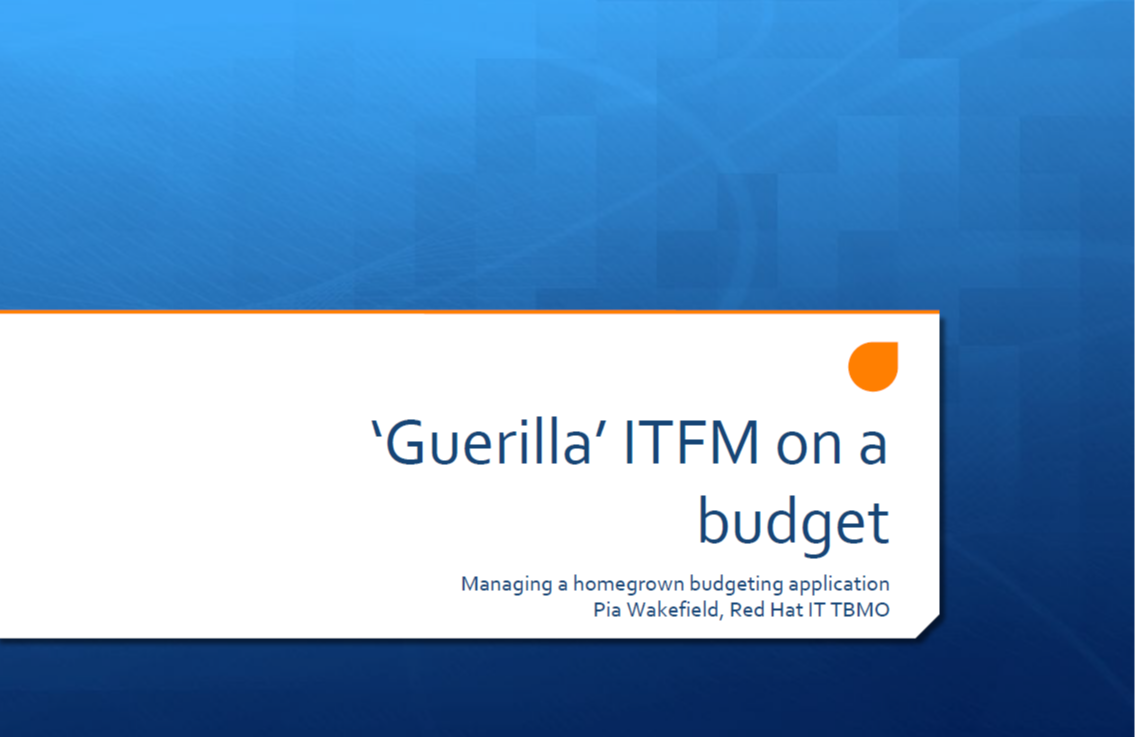Guerilla ITFM on a Budget: Managing Homegrown Budgeting Applications