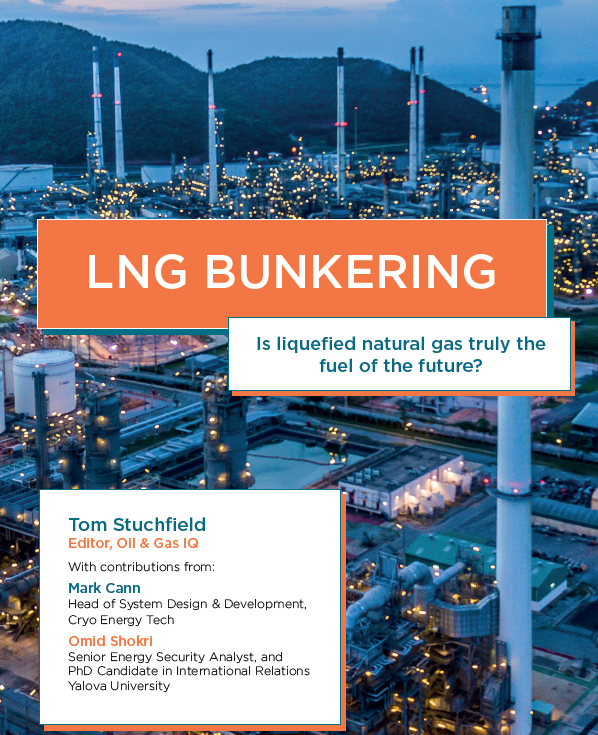 Is Liquefied Natural Gas Truly the Fuel of the Future
