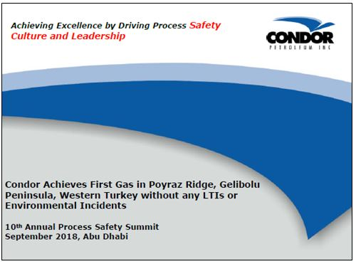 Achieving excellence by driving process safety culture and leadership by William Hatcher