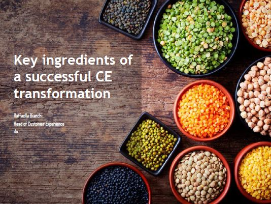 Key ingredients of a successful CE transformation