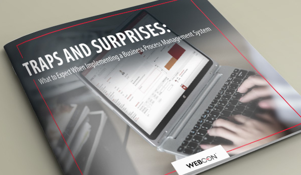 TRAPS AND SURPRISES: What to Expect When Implementing a Business Process Management System