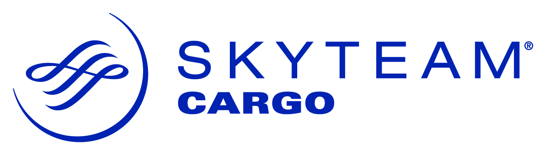 SkyTeam Cargo Logo