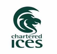 Chartered Institution of Civil Engineering Surveyors Logo