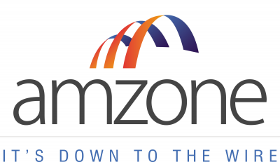 Amzone international Logo