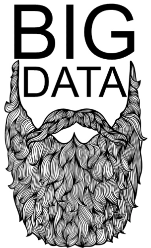 Big Data Beard Logo
