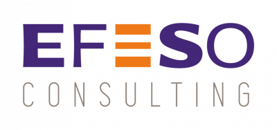 EFESO Consulting Logo
