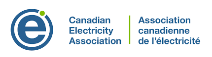 Canadian Electricity Association