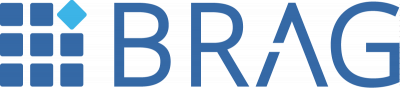 Business Reporting - Advisory Group Logo