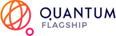 Director, Institute for Quantum Control of the Peter Grünberg Institute Logo