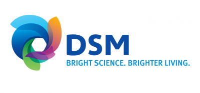 DSM Data Analytics Center of Excellence Logo