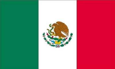 Federal Government of Mexico Logo