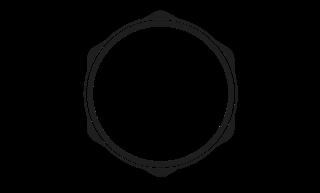 RCAM Technologies Logo