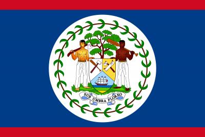 Belize Defence Force Logo