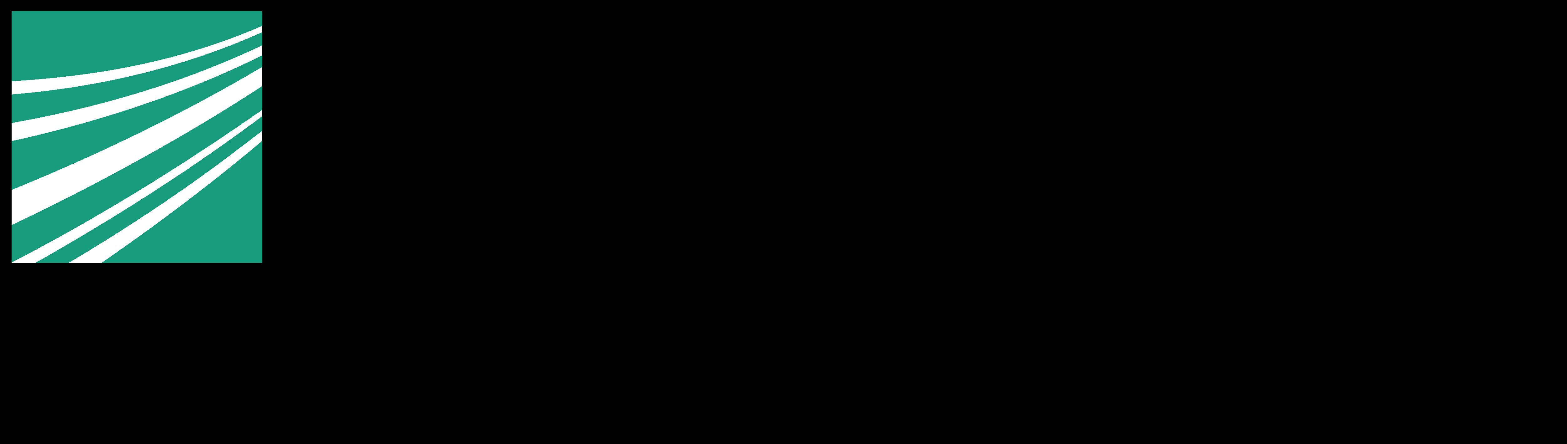 Fraunhofer IISB Logo