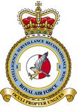 UK Royal Air Force Logo