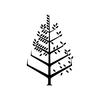 Four Seasons Hotels Logo