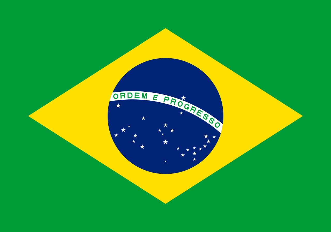 Brazilian Air Force Logo