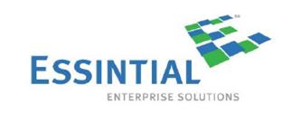Essintial Enterprise Solutions Logo