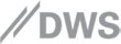 DWS Group Logo