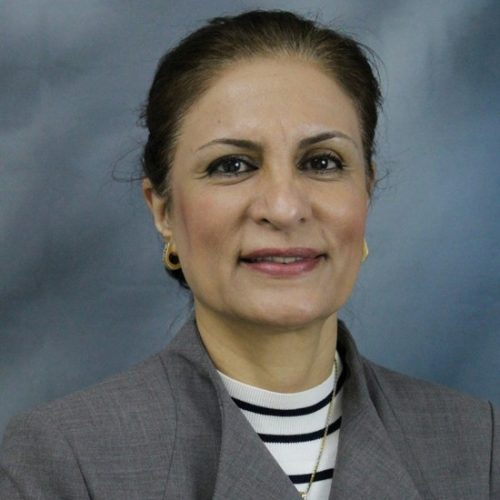 Afsaneh Rabiei, Professor of Mechanical and Aerospace Engineering at North Carolina State University