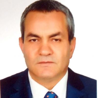 Elsayed Mohamed Metwalli